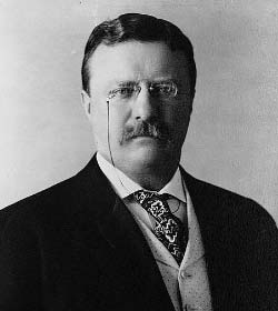 Theodore Roosevelt - Author Quotes