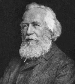 Ernst Haeckel - Author Quotes