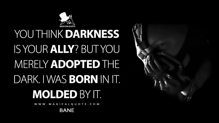 You Adopted The Darkness Quote: The Dark Knight Rises Quotes