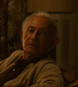 hyman roth quotes - 250×280