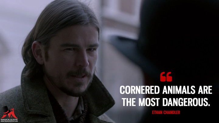 Cornered animals are the most dangerous. - Ethan Chandler (Penny Dreadful Quotes)