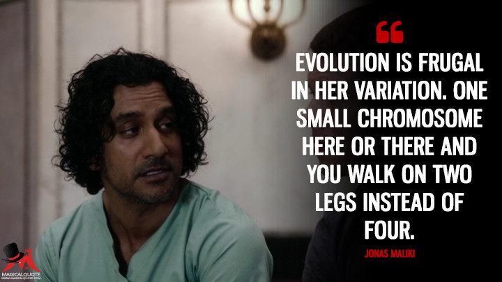 Evolution is frugal in her variation. One small chromosome here or there and you walk on two legs instead of four. - Jonas Maliki (Sense8 Quotes)