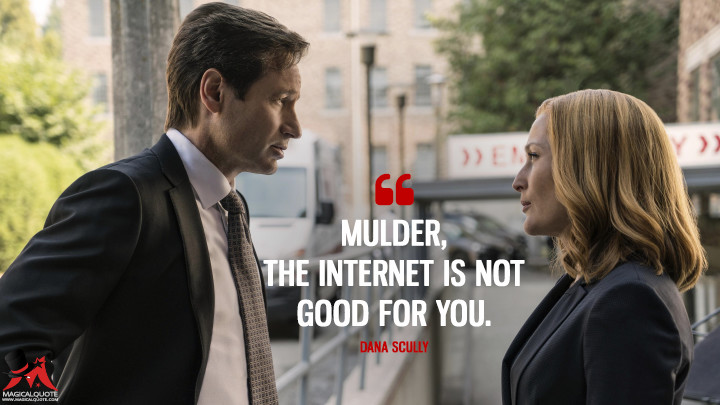 Mulder, the Internet is not good for you. - Dana Scully (The X-Files Quotes)