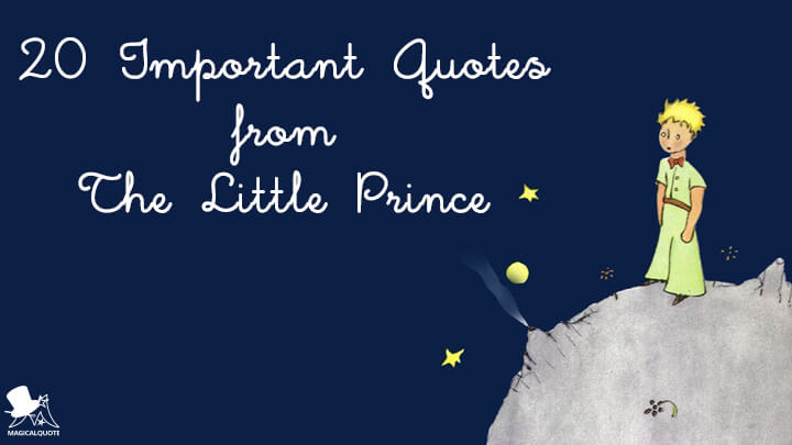 20 Important Quotes From The Little Prince Magicalquote