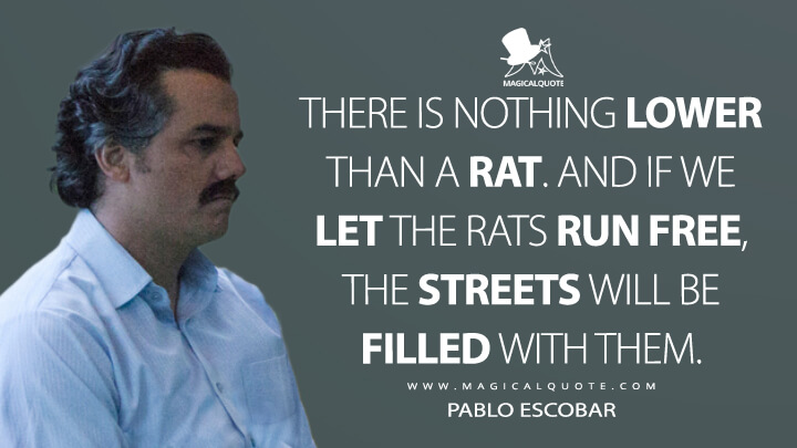There is nothing lower than a rat. And if we let the rats run free, the streets will be filled with them. - Pablo Escobar (Narcos Quotes)