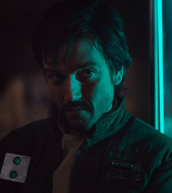 Cassian Andor - Rogue One: A Star Wars Story Quotes