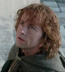 Peregrin 'Pippin' Took - The Lord of the Rings Quotes