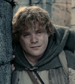 Samwise 'Sam' Gamgee - The Lord of the Rings Quotes