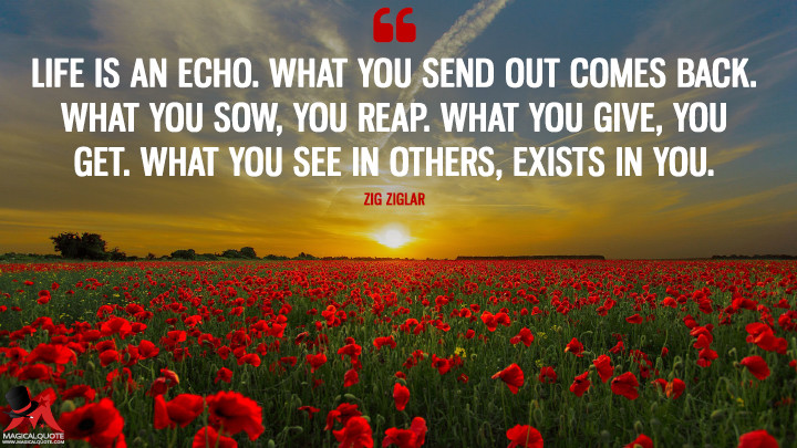 Life is an echo. What you send out comes back. What you sow, you reap. What you give, you get. What you see in others, exists in you. - Zig Ziglar (Life Quotes)
