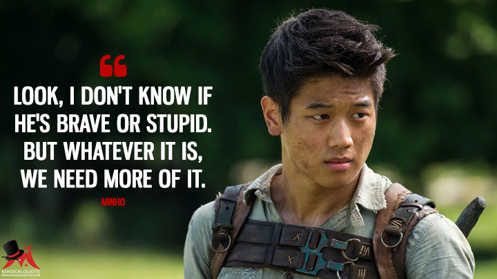 Look, I don't know if he's brave or stupid. But whatever it is, we need more of it. - Minho (The Maze Runner Quotes)