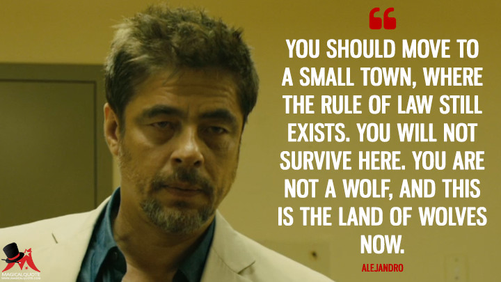 You should move to a small town, where the rule of law still exists. You will not survive here. You are not a wolf, and this is the land of wolves now. - Alejandro (Sicario Quotes)