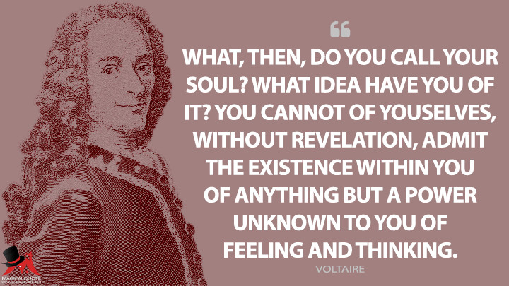 What, then, do you call your soul? What idea have you of it? You cannot of yourselves, without revelation, admit the existence within you of anything but a power unknown to you of feeling and thinking. - Voltaire Quotes