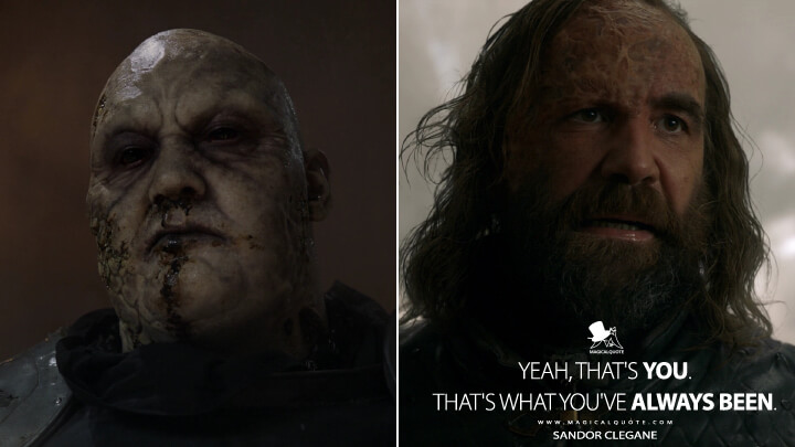 Yeah, that's you. That's what you've always been. - Sandor Clegane (Game of Thrones Quotes)