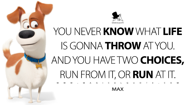 You never know what life is gonna throw at you. And you have two choices, run from it, or run at it. - Max (The Secret Life of Pets 2 Quotes)
