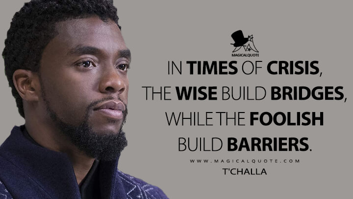 The wise build bridges, while the foolish build barriers. - T'Challa (Black Panther Quotes)