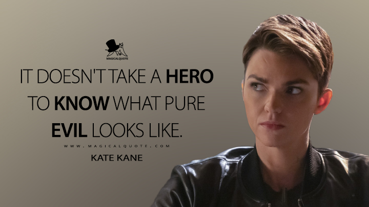 It doesn't take a hero to know what pure evil looks like. - Kate Kane (Batwoman Quotes)