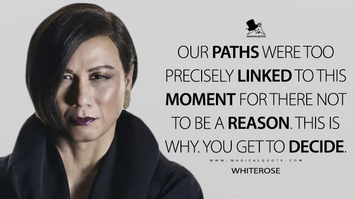 Our paths were too precisely linked to this moment for there not to be a reason. This is why. You get to decide. - Whiterose (Mr. Robot Quotes)