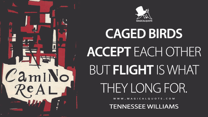 Caged birds accept each other but flight is what they long for. - Tennessee Williams (Camino Real Quotes)