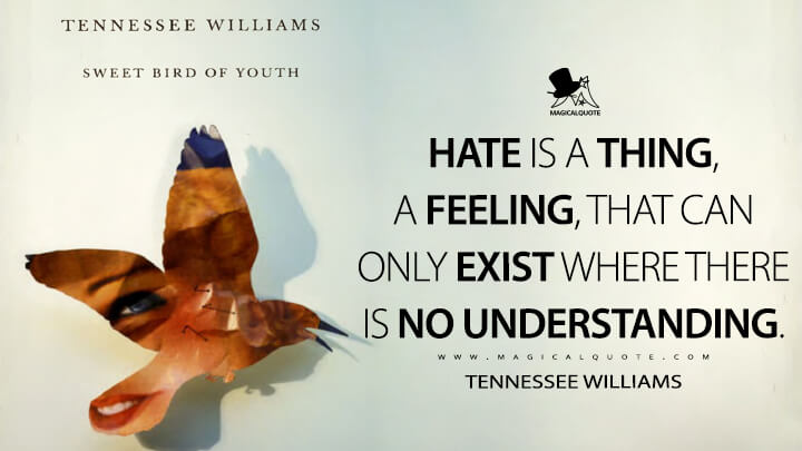 Hate is a thing, a feeling, that can only exist where there is no understanding. - Tennessee Williams (Sweet Bird of Youth Quotes)