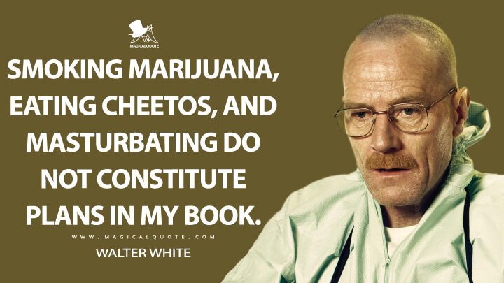 Smoking marijuana, eating Cheetos, and masturbating do not constitute plans in my book. - Walter White (Breaking Bad Quotes)