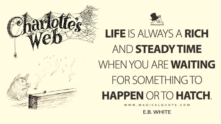 Life is always a rich and steady time when you are waiting for something to happen or to hatch. - E. B. White (Charlotte's Web Quotes)
