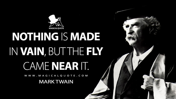Nothing is made in vain, but the fly came near it. - Mark Twain Quotes