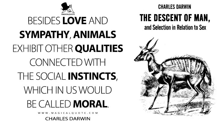 Besides love and sympathy, animals exhibit other qualities connected with the social instincts, which in us would be called moral. - Charles Darwin (The Descent of Man, and Selection in Relation to Sex Quotes)