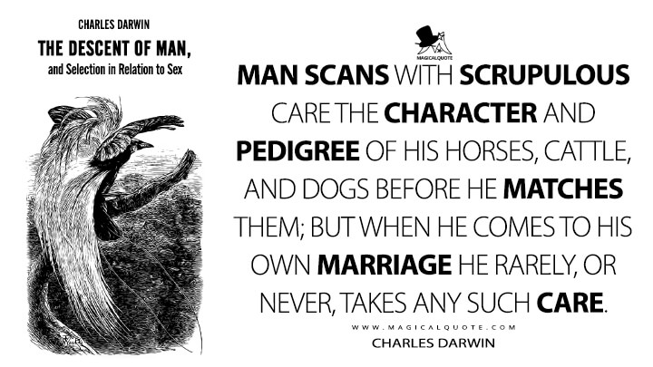 Man scans with scrupulous care the character and pedigree of his horses, cattle, and dogs before he matches them; but when he comes to his own marriage he rarely, or never, takes any such care. - Charles Darwin (The Descent of Man, and Selection in Relation to Sex Quotes)