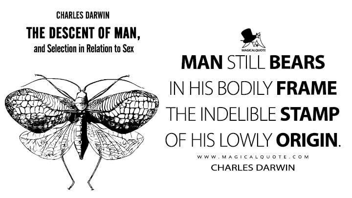 Man still bears in his bodily frame the indelible stamp of his lowly origin. - Charles Darwin (The Descent of Man, and Selection in Relation to Sex Quotes)
