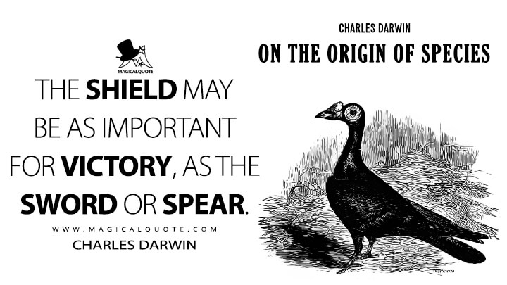 The shield may be as important for victory, as the sword or spear. - Charles Darwin (On the Origin of Species Quotes)
