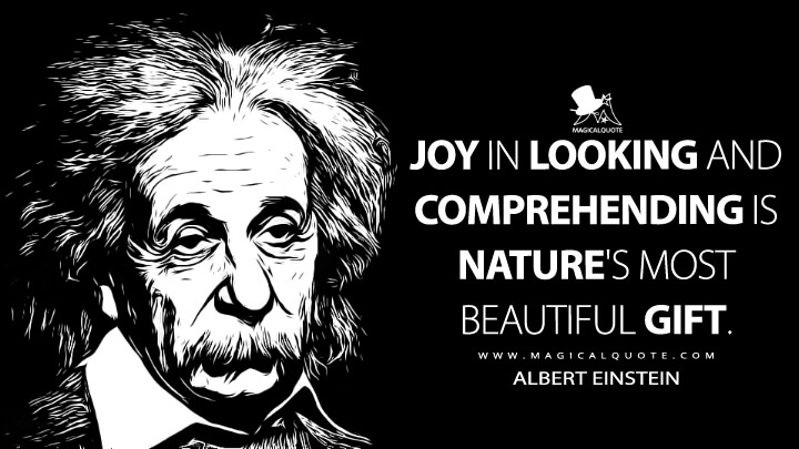 Joy in looking and comprehending is nature's most beautiful gift. - Albert Einstein Quotes