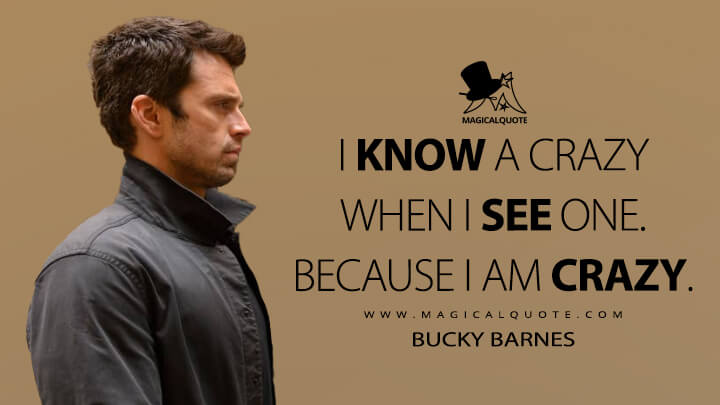 I know a crazy when I see one. Because I am crazy. - Bucky Barnes (The Falcon and the Winter Soldier Quotes)